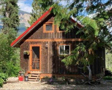Cozy Off Grid Mountain Cabin In The Wilderness